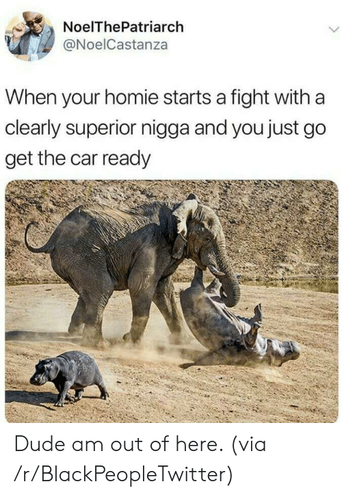 out-of-here: NoelThePatriarch  @NoelCastanza  When your homie starts a fight with a  clearly superior nigga and you just go  get the car ready Dude am out of here. (via /r/BlackPeopleTwitter)