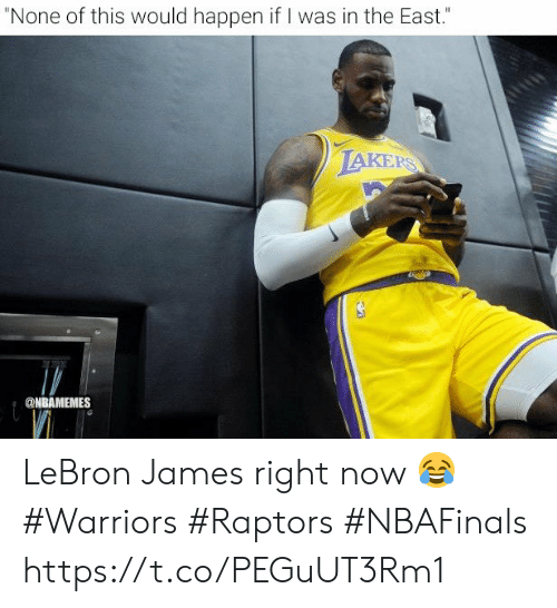 """Nbamemes: """"None of this would happen if I was in the East.""""  LAKERS  @NBAMEMES LeBron James right now 😂  #Warriors #Raptors #NBAFinals https://t.co/PEGuUT3Rm1"""