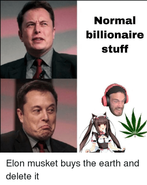 Delete It: Normal  billionaire  stuff Elon musket buys the earth and delete it