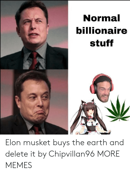 Delete It: Normal  billionaire  stuff Elon musket buys the earth and delete it by Chipvillan96 MORE MEMES