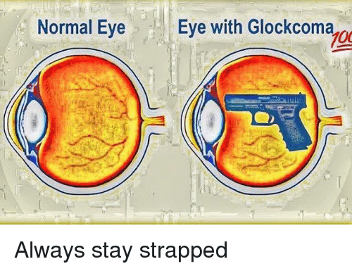 Evees: Normal Eye  Eve with Glockcoma  700  g Always stay strapped