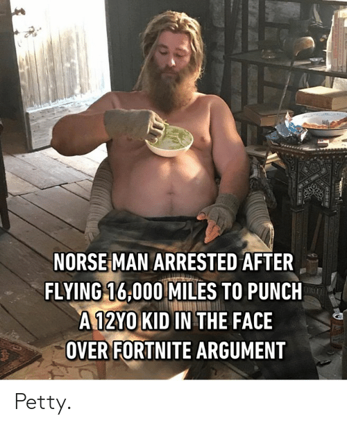 Dank, Petty, and 🤖: NORSE MAN ARRESTED AFTER  FLYING 16,000 MILES TO PUNCH  A12YO KID IN THE FACE  OVER FORTNITE ARGUMENT Petty.