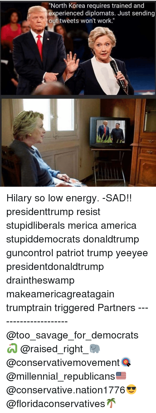 """Hilary: """"North Korea requires trained and  experienced diplomats. Just sending  out tweets won't work."""" Hilary so low energy. -SAD!! presidenttrump resist stupidliberals merica america stupiddemocrats donaldtrump guncontrol patriot trump yeeyee presidentdonaldtrump draintheswamp makeamericagreatagain trumptrain triggered Partners --------------------- @too_savage_for_democrats🐍 @raised_right_🐘 @conservativemovement🎯 @millennial_republicans🇺🇸 @conservative.nation1776😎 @floridaconservatives🌴"""