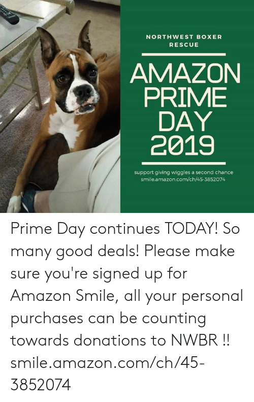 Amazon, Amazon Prime, and Memes: NORTHWEST BOXER  RESCUE  AMAZON  PRIME  DAY  2019  support giving wiggles a second chance  smile.amazon.com/ch/45-3852074 Prime Day continues TODAY! So many good deals! Please make sure you're signed up for Amazon Smile, all your personal purchases can be counting towards donations to NWBR !!  smile.amazon.com/ch/45-3852074