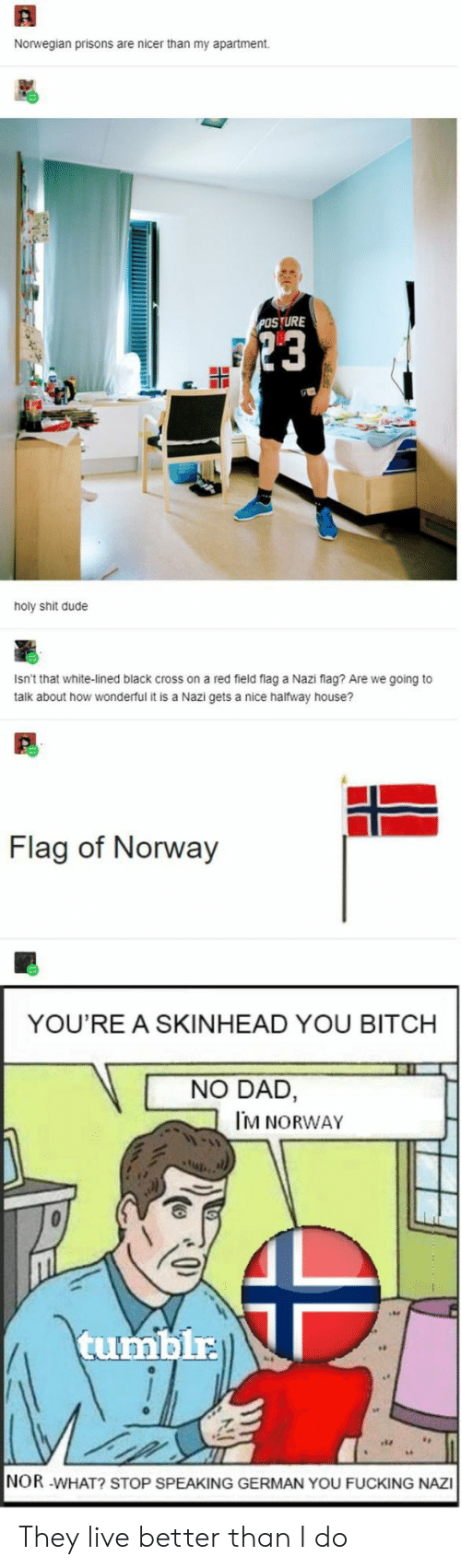Lined: Norwegian prisons are nicer than my apartment  POSTURE  23  holy shit dude  Isn't that white-lined black cross on a red field flag a Nazi flag? Are we going to  talk about how wonderful it is a Nazi gets a nice halfway house?  Flag of Norway  YOU'RE A SKINHEAD YOU BITCH  NO DAD,  M NORWAY  tumblr  NOR -WHAT? STOP SPEAKING GERMAN YOU FUCKING NAZI They live better than I do