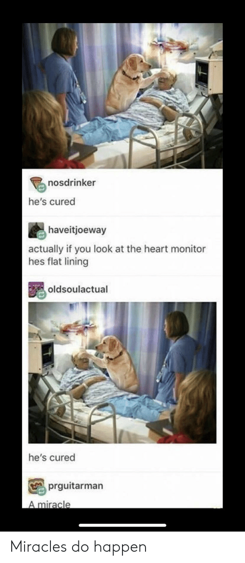 Heart, Miracles, and You: nosdrinker  he's cured  haveitjoeway  actually if you look at the heart monitor  hes flat lining  oldsoulactual  he's cured  prguitarman  A miracle Miracles do happen