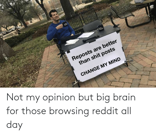 reddit all: Not my opinion but big brain for those browsing reddit all day