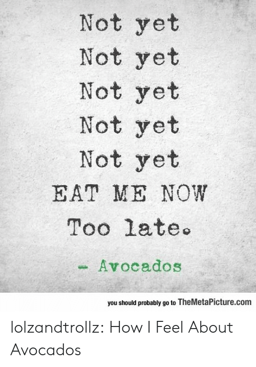 How I Feel: Not yet  Not yet  Not yet  Not yet  Not yet  EAT ME NOW  Too late  Avocados  you should probably go to TheMetaPicture.com lolzandtrollz:  How I Feel About Avocados