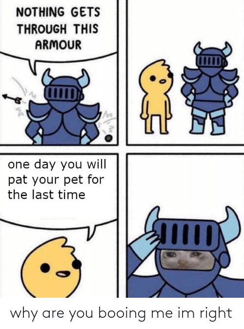 Time, Dank Memes, and Pet: NOTHING GETS  THROUGH THIS  ARMOUR  one day you will  pat your pet for  the last time  Шр why are you booing me im right