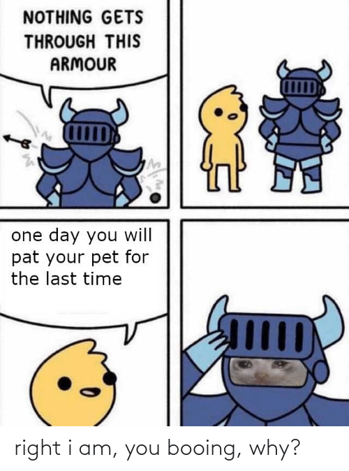 Time, Dank Memes, and Pet: NOTHING GETS  THROUGH THIS  ARMOUR  one day you will  pat your pet for  the last time  Шр right i am, you booing, why?