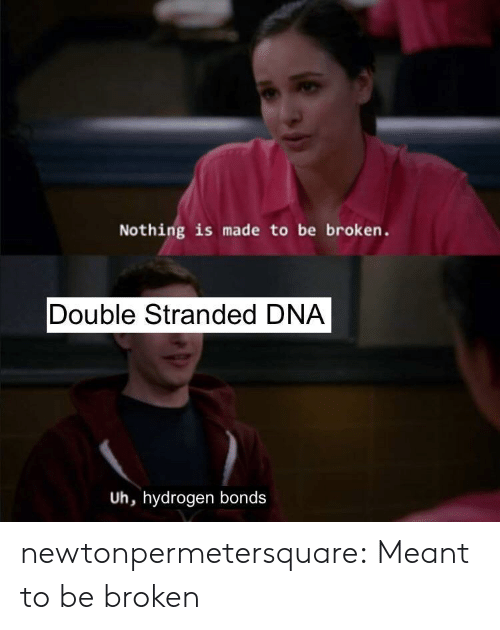 Tumblr, Blog, and Dna: Nothing is made to be broken.  Double Stranded DNA  Uh, hydrogen bonds newtonpermetersquare:  Meant to be broken