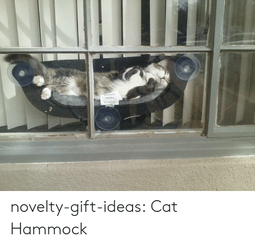 Hammock: novelty-gift-ideas:  Cat Hammock