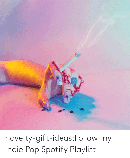 Spotify: novelty-gift-ideas:Follow my Indie Pop Spotify Playlist
