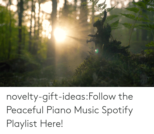 Spotify: novelty-gift-ideas:Follow the Peaceful Piano Music Spotify Playlist Here!