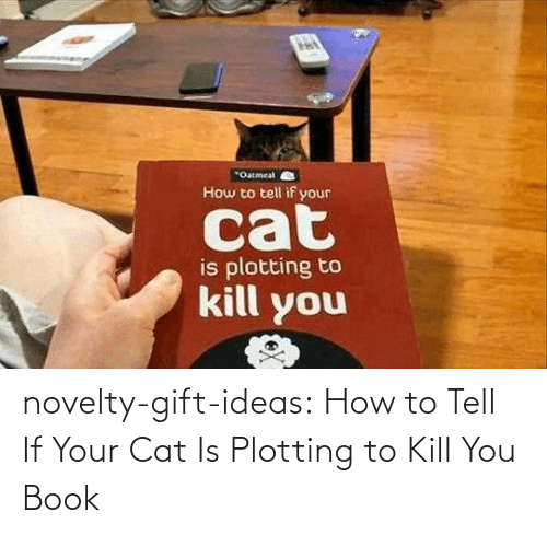 Tumblr, Blog, and Book: novelty-gift-ideas:  How to Tell If Your Cat Is Plotting to Kill You Book