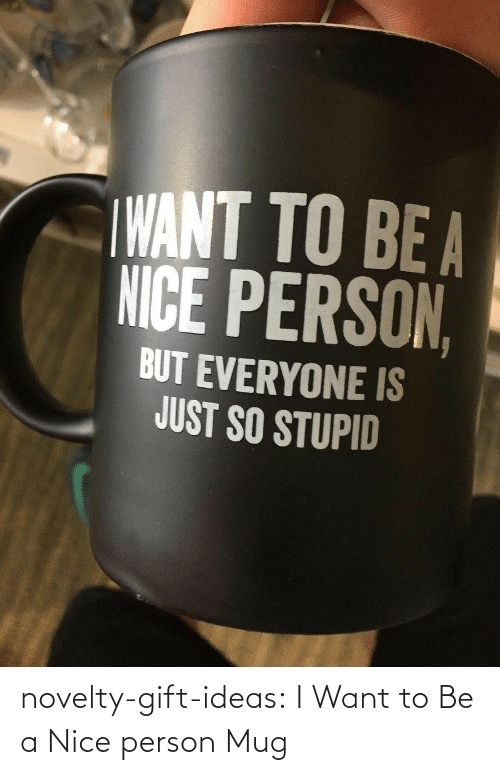 I Want: novelty-gift-ideas:  I Want to Be a Nice person Mug