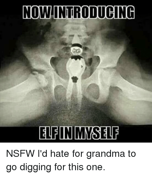 Elf, Funny, and Grandma: NOW.INTRODUCING  ELFIN MYSELF NSFW I'd hate for grandma to go digging for this one.