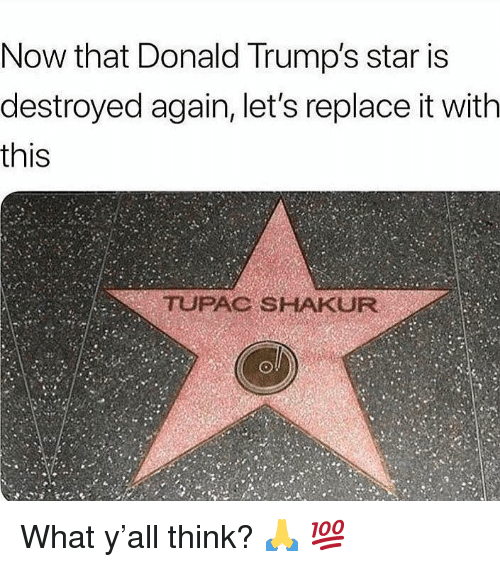 Tupac Shakur, Star, and Tupac: Now that Donald Trump's star is  destroyed again, let's replace it with  this  TUPAC SHAKUR What y'all think? 🙏 💯