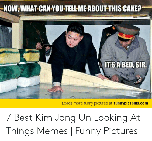 Funny, Kim Jong-Un, and Memes: NOW,WHAT CAN YOU-TELL-ME ABOUTTHIS CAKE?  TSA BED, SIR  Loads more funny pictures at funnypicsplus.conm 7 Best Kim Jong Un Looking At Things Memes | Funny Pictures