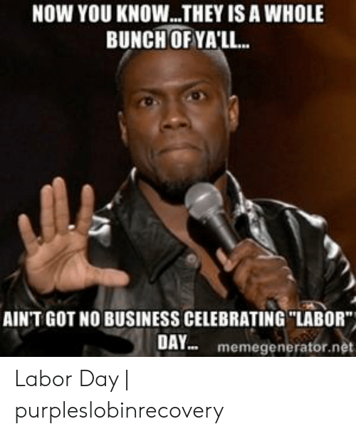 """Purpleslobinrecovery: NOW YOU KNOW...THEY IS A WHOLE  BUNCH OF YA'LL...  AIN'T GOT NO BUSINESS CELEBRATING """"LABOR  DAY memegenerator.net Labor Day 