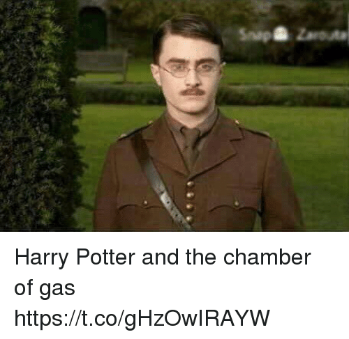 Harry Potter, Hood, and Potter: npZarouta Harry Potter and the chamber of gas https://t.co/gHzOwIRAYW