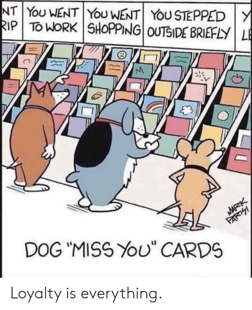 """Shopping, Work, and Dog: NT YoU WENT YoU WENT YOU STEPPED Y  RIP TO WORK SHOPPING OUTSIDE BRIEFLY LE  MARK  DOG """"MISS YOU"""" CARDS  FARI Loyalty is everything."""