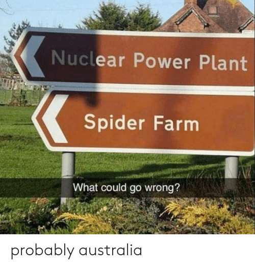 Spider, Australia, and Power: Nuclear Power Plant  Spider Farm  What could go wrong? probably australia