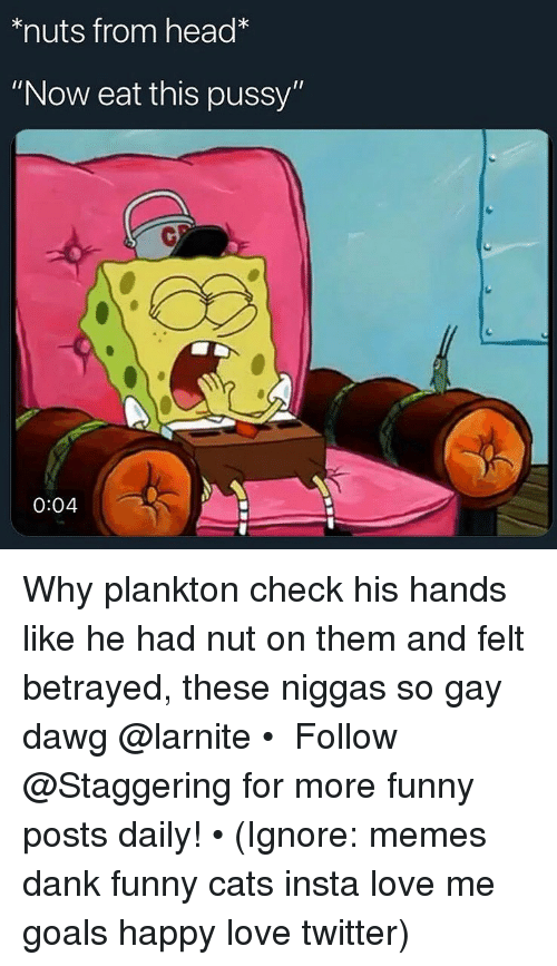 """funny cats: *nuts from head*  """"Now eat this pussy""""  0  0:04 Why plankton check his hands like he had nut on them and felt betrayed, these niggas so gay dawg @larnite • ➫➫➫ Follow @Staggering for more funny posts daily! • (Ignore: memes dank funny cats insta love me goals happy love twitter)"""
