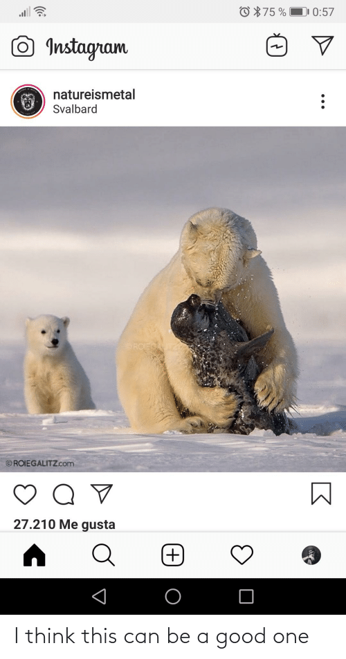 svalbard: O 875 %  D0:57  © Instagram  SLEAE  natureismetal  Svalbard  ROIEZ  OROIEGALITZ.com  27.210 Me gusta  +) I think this can be a good one
