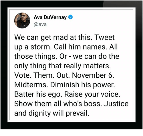 Justice, Power, and Voice: (o  Ava DuVernay  @ava  We can get mad at this. Tweet  up a storm. Call him names. All  those things. Or - we can do the  only thing that really matters.  Vote. Them. Out. November 6.  Midterms. Diminish his power.  Batter his ego. Raise your voice.  Show them all who's boss. Justice  and dignity will prevail.