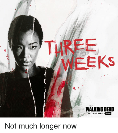 Walking Dead Returns: o O  EKS  WALKING DEAD  RETURNS FEB 12 aMC Not much longer now!