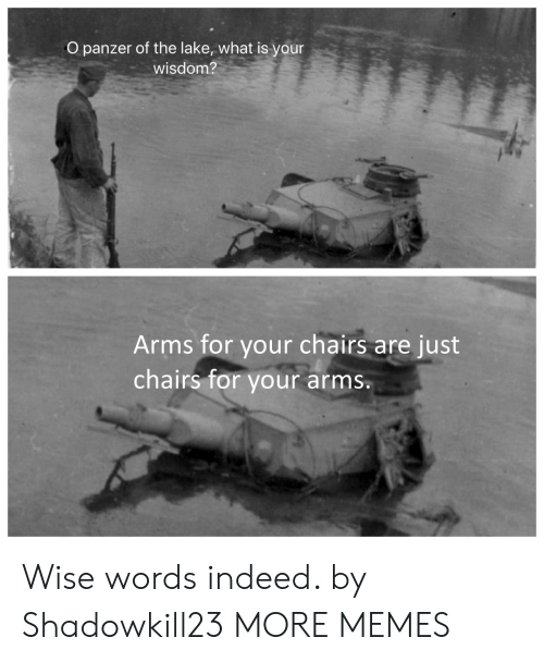 lake: O panzer of the lake, what is your  wisdom?  Arms for your chairs  chairs for  are just  your arms. Wise words indeed. by Shadowkill23 MORE MEMES