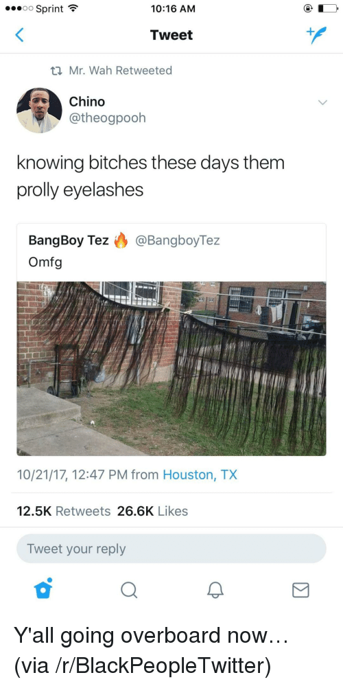 Blackpeopletwitter, Houston, and Sprint: o Sprint  10:16 AM  Tweet  Mr. Wah Retweeted  Chino  @theogpooh  knowing bitches these days them  prolly eyelashes  BangBoy Tez ) @BangboyTez  Omfg  10/21/17, 12:47 PM from Houston, TX  12.5K Retweets 26.6K Likes  Tweet your reply <p>Y'all going overboard now… (via /r/BlackPeopleTwitter)</p>