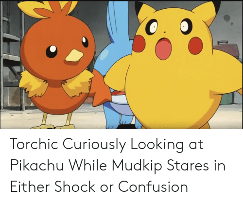 Pikachu, Looking, and Shock: O. Torchic Curiously Looking at Pikachu While Mudkip Stares in Either Shock or Confusion