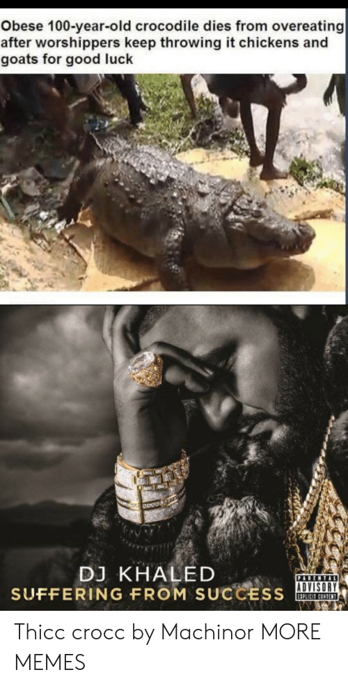 overeating: Obese 100-year-old crocodile dies from overeating  after worshippers keep throwing it chickens and  goats for good luck  Odos  DJ KHALED  SUFFERING FROM SUCCSOA  ADVISORY  IPLICIT CONTENT Thicc crocc by Machinor MORE MEMES