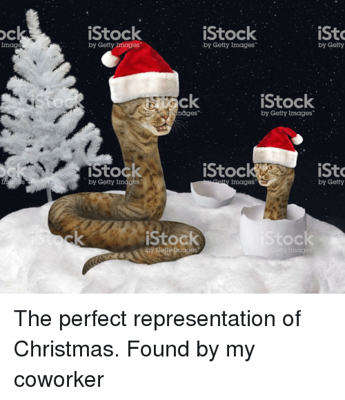 Christmas, Getty Images, and Images: OC  iStock  iStock  iSt  Imag  by Getty Images  by Getty Images  by Getty  ck  etty mages  iStock  by Getty Images  iStock  by Getty Images  iStoc  iSto  atty Images  by Getty  Stock  Stock  by Cetymages  Getty Images