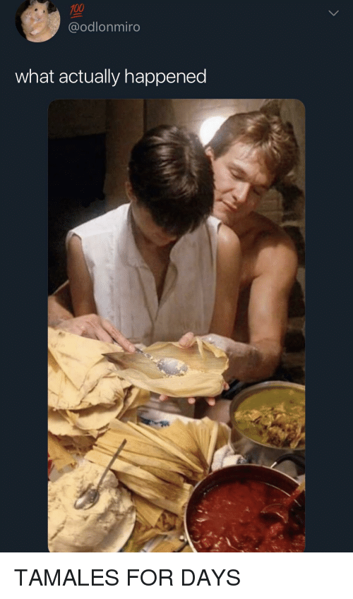 tamales: @odlonmiro  what actually happened TAMALES FOR DAYS