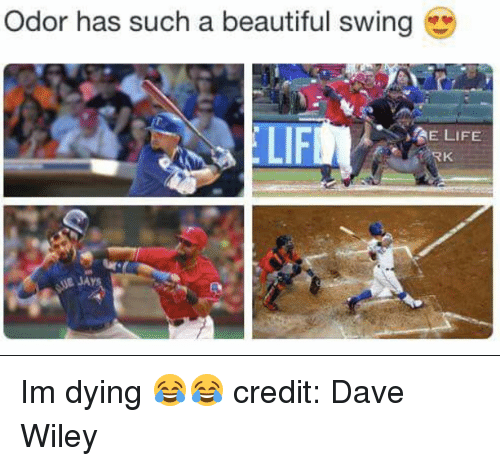 wiley: Odor has such a beautiful swing  LIFM  SAE LIFE  RK Im dying 😂😂  credit: Dave Wiley