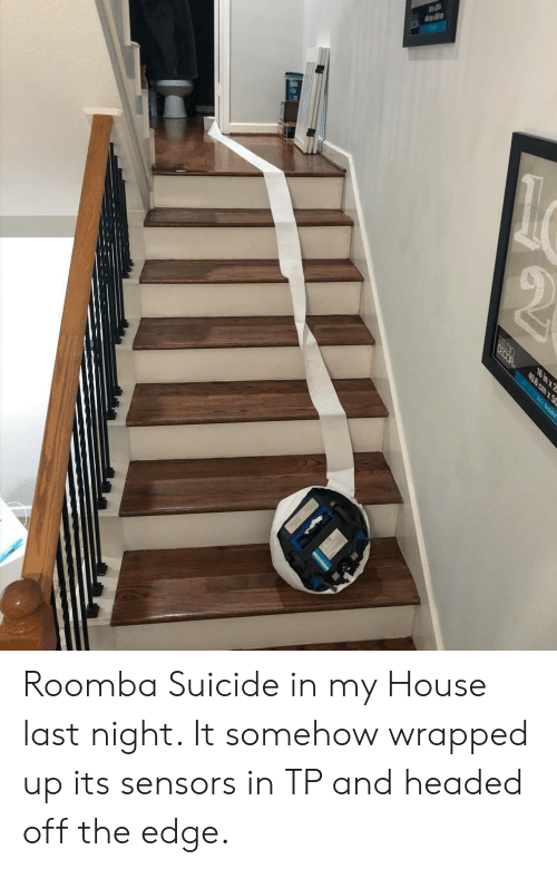 My House, Roomba, and House: OEOOR  16 in x 2  40.6 cm x50  BEL MONT Roomba Suicide in my House last night. It somehow wrapped up its sensors in TP and headed off the edge.
