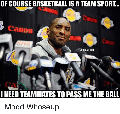 balling: OF COURSE BASKETBALL IS A TEAM SPORT...  Canon  @NBAMEMES  NEED TEAMMATES TO PASS ME THE BALL Mood Whoseup