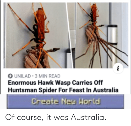 Course: Of course, it was Australia.