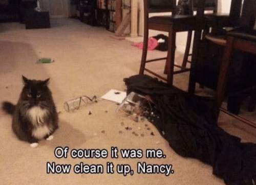 It Was Me: Of course it was me.  NOW Clean it up,  Now clean it up, Nancy,