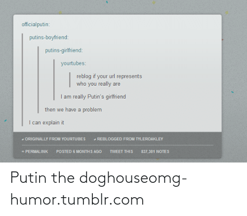 Permalink: officialputin:  putins-boyfriend:  putins-girlfriend:  yourtubes:  reblog if your url represents  who you really are  I am really Putin's girlfriend  then we have a problem  I can explain it  - ORIGINALLY FROM YOURTUBES  - REBLOGGED FROM TYLEROAKLEY  - PERMALINK  POSTED 6 MONTHS AGO  TWEET THIS  837,301 NOTES Putin the doghouseomg-humor.tumblr.com