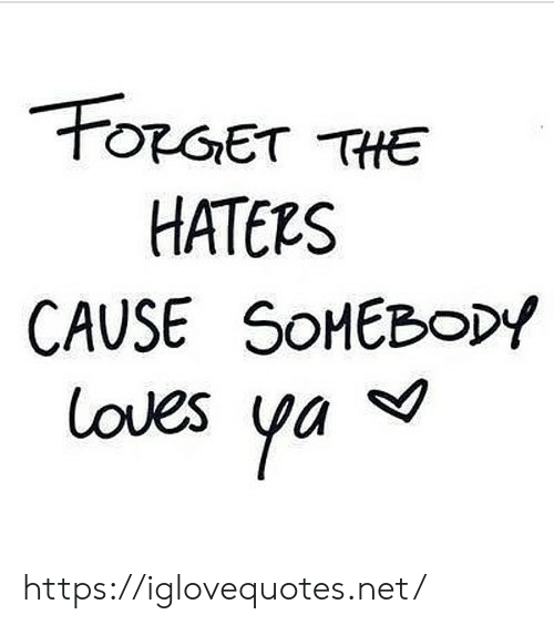 Net, Href, and Haters: OGET THE  HATERS  CAUSE SOHEBODY  loves ya https://iglovequotes.net/