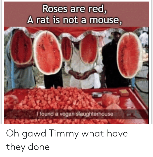 Gawd: Oh gawd Timmy what have they done