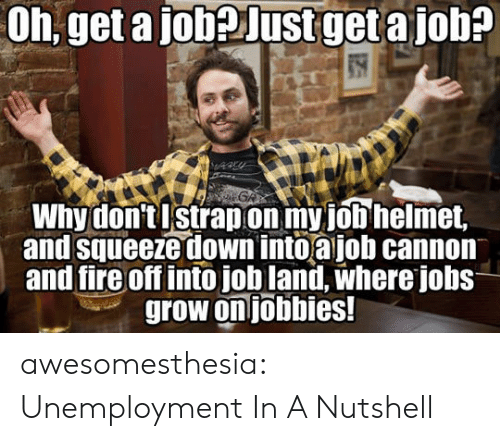 Fire, Tumblr, and Blog: Oh, get a jobeJustget a job?  GA  Why don'tIstrapon my job helmet,  and squeeze down into ajob cannon  and fire off intojob land, where jobs  grow on jobbies! awesomesthesia:  Unemployment In A Nutshell