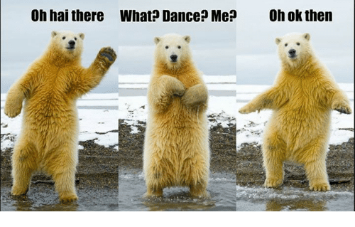 Dance, What, and Oh Hai: Oh hai there What  Dance? Me? Oh ok then