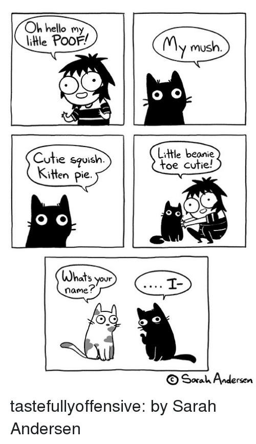poof: Oh hello my  litle PooF!  MMv mush.  Cuthe squish.  Kitten Pie.  Litle beanie  toe cutie!  Whats your  name?  OSaahAndersen tastefullyoffensive:  by Sarah Andersen