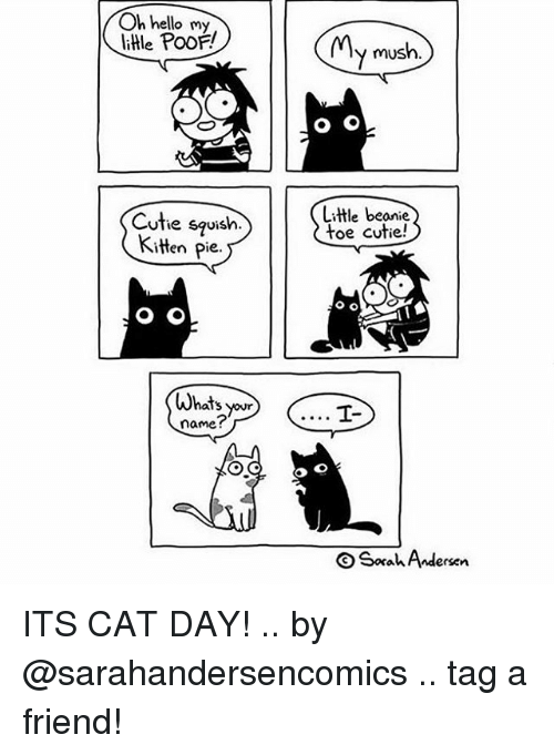 Poofes: Oh hello my  little PoOF  y mush.  Cutie squish.  Kitten pie.  Little beanie  toe cutie!  Whats our  name?  Sorah Andersen ITS CAT DAY! .. by @sarahandersencomics .. tag a friend!