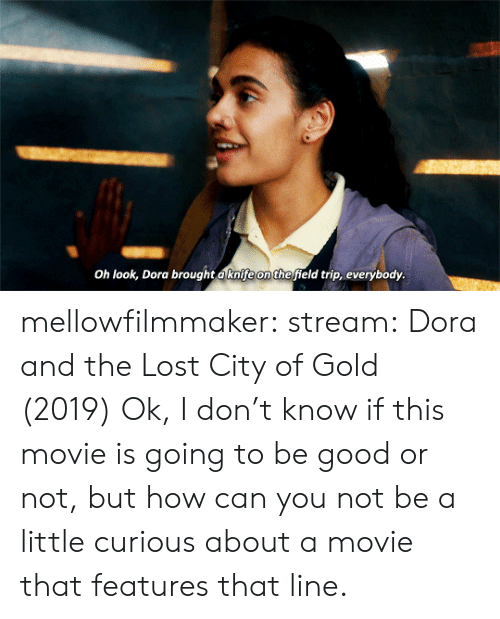 Tumblr, Lost, and Blog: Oh look, Dora brought aknife on thefield trip, everybody. mellowfilmmaker: stream:  Dora and the Lost City of Gold (2019)  Ok, I don't know if this movie is going to be good or not, but how can you not be a little curious about a movie that features that line.